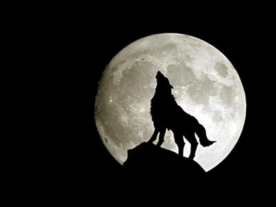Ladrar a la Luna