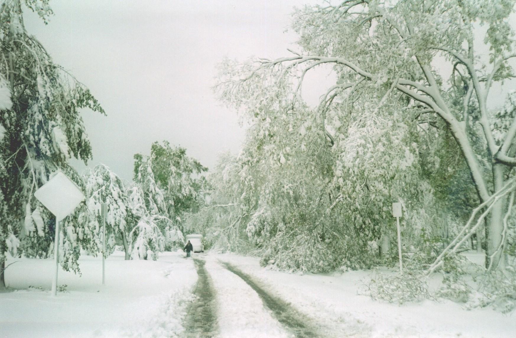¿Por qué estar en un invierno eterno?