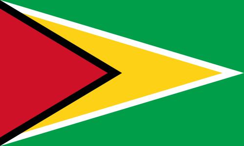 Día 11 – Guyana