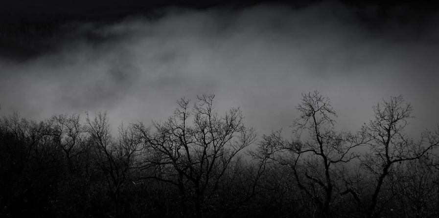 Viviendo en la oscuridad…