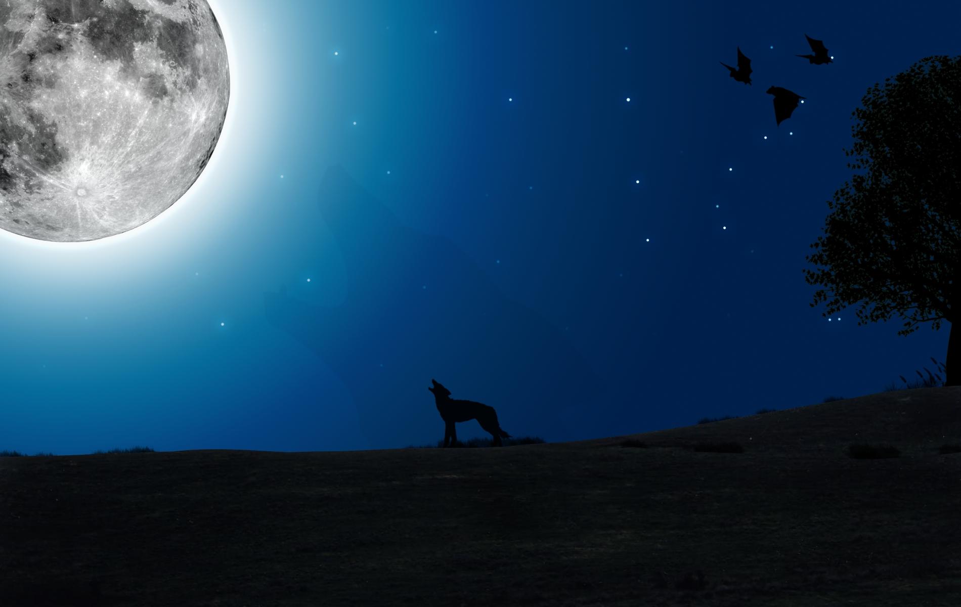 La luna sigue brillando