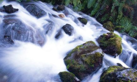 Más pura que el agua más cristalina