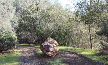 Cuidado con las piedras de tropiezo