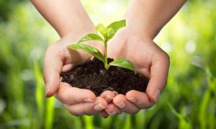 ¿Debemos cuidar la Tierra?