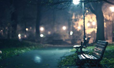 En medio de la oscuridad