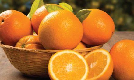 Una naranja apetitosa