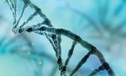Genética y espiritualmente únicos