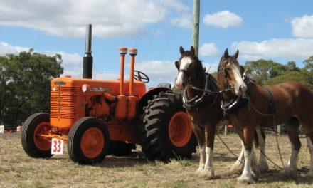 El caballo y el tractor