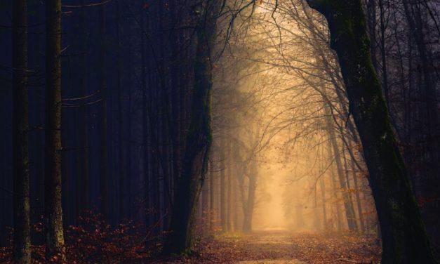 Caminos desconocidos