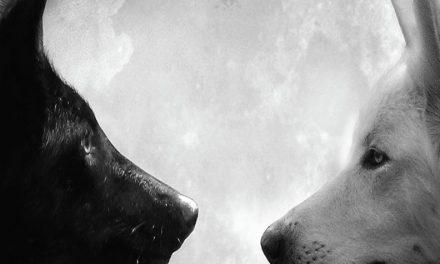 Una historia de dos lobos hambrientos