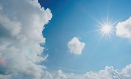 Debajo del sol