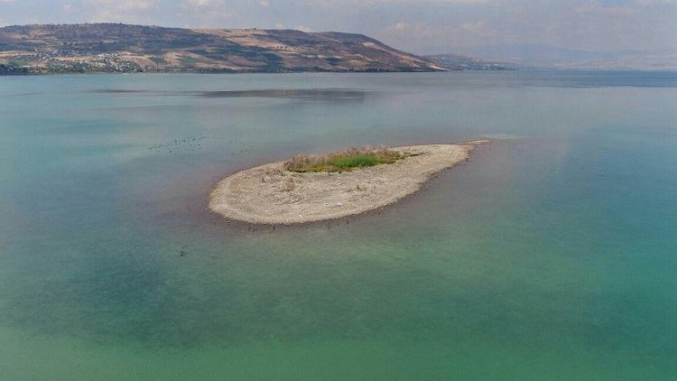 Sequía en Israel, pone en riesgo el Mar de Galilea
