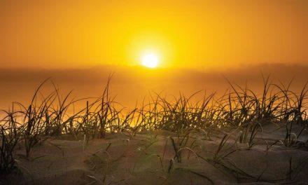 ¿Luz antes de la creación del sol?