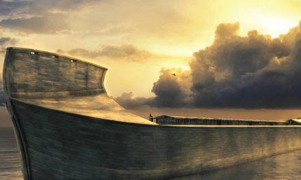 ¿Fue el diluvio de Noé global o local?