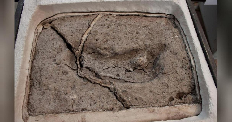 Huella en Chile, ¿es la evidencia más antigua de los humanos en las Américas?