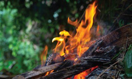 No siempre un incendio trae malas noticias