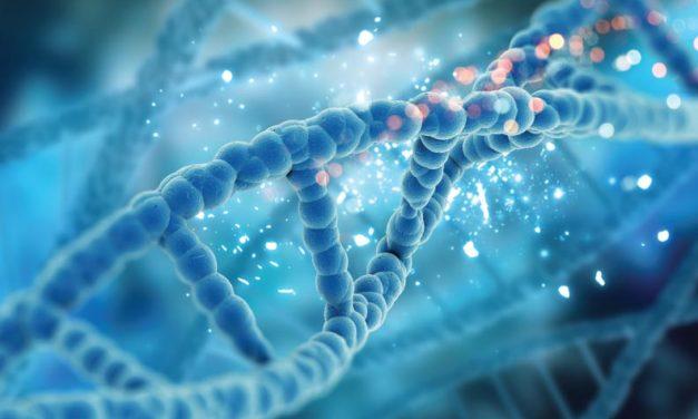 La genética y la evolución no son compatibles