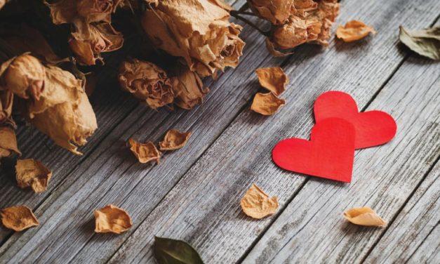 Los mensajes se olvidarán y las flores se marchitarán