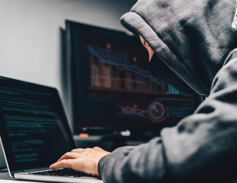 ¡Cuidado con los ladrones cibernéticos!