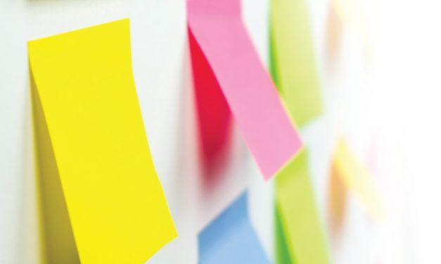 Organiza tus ideas